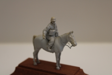 Nordwind 1/48 NWSS 012 Soldier of the Div. Florian Geier on horseback, curier